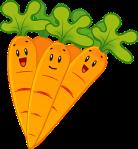 carrots-2022583__340