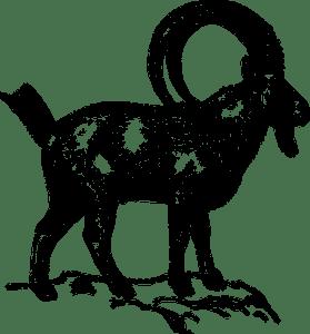 ibex-153421__340