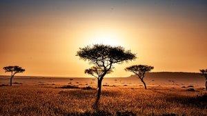 kenya-4119572__340