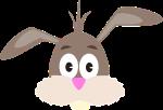rabbit-2089784__340